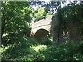 TQ0341 : Bridge at Run Common by Chris Thomas-Atkin