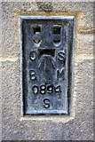 SE1632 : Benchmark on City Hall by Roger Templeman