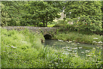 SK3160 : Lower Pond Lumsdale by Malcolm Neal