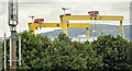 "J3575 : ""Goliath"" and ""Samson"", Harland & Wolff, Belfast (July 2017) by Albert Bridge"