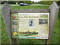 SP9901 : Display Board on Ley Hill Common by David Hillas