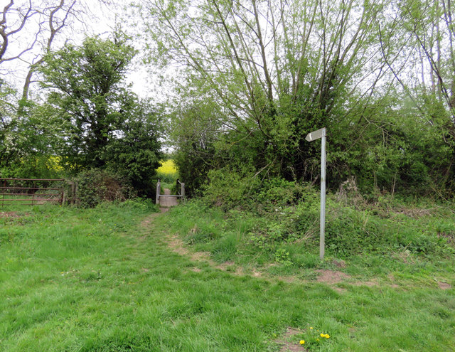 Beginning of footpath towards Bosworth Field