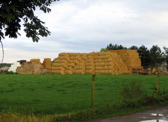 Bales at Wolds Farm
