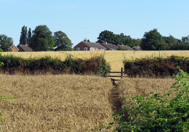 Towards Gaddesby