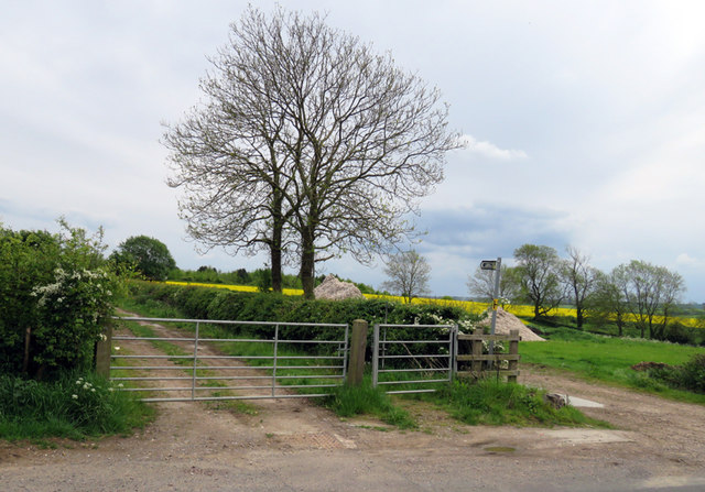 End of footpath towards Egleton