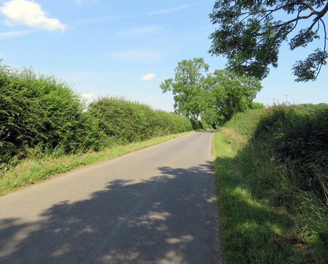 Pasture Lane North towards Frisby