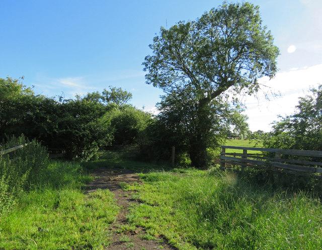 Field entrances south of Kirby Lane