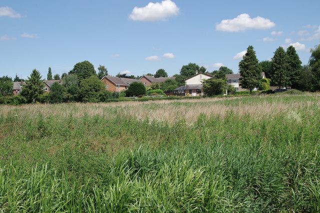 Modern houses in Linton