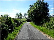 H6058 : Tullylinton Road by Kenneth  Allen