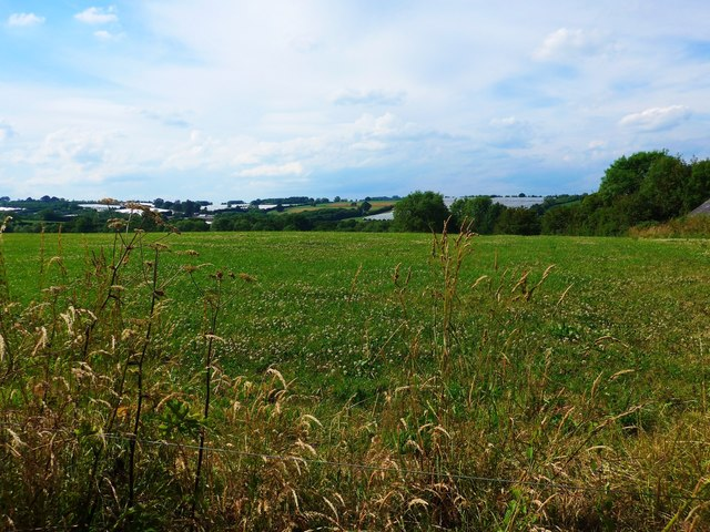 Meadow first - then polythene