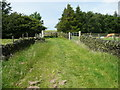SE0424 : Sowerby Bridge FP38 in a grass lane, Luddendenfoot by Humphrey Bolton