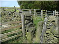 SE0424 : Stile and gate on Sowerby Bridge FP38, Luddendenfoot by Humphrey Bolton