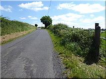 H6056 : Feddan Road, Feddan by Kenneth  Allen