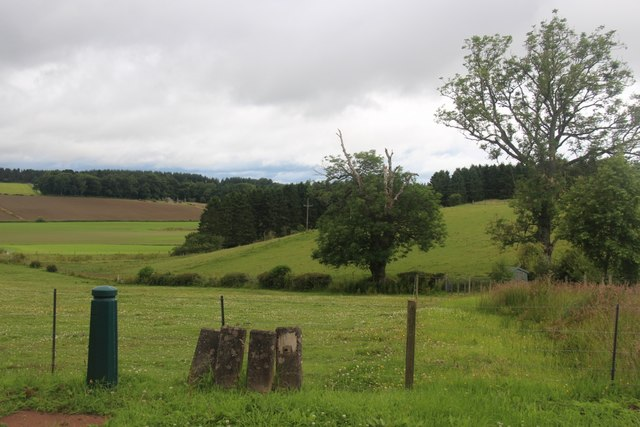 Rolling farmland at Drumbauchly