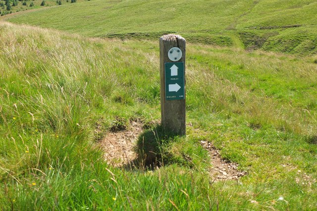 Signpost for path junction, Flemington Burn