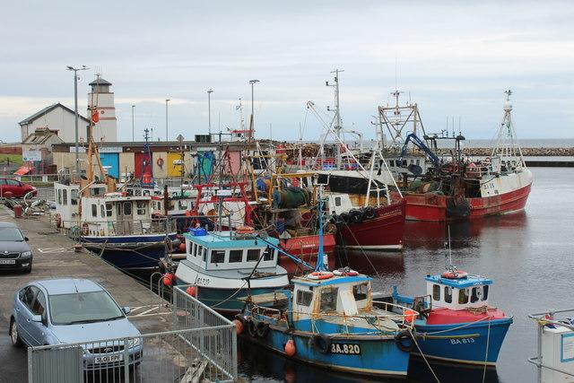 Busy Girvan Harbour