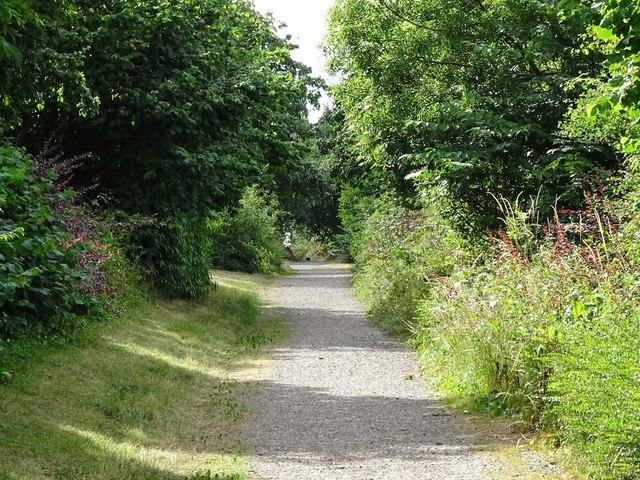Cycle path through Hilton