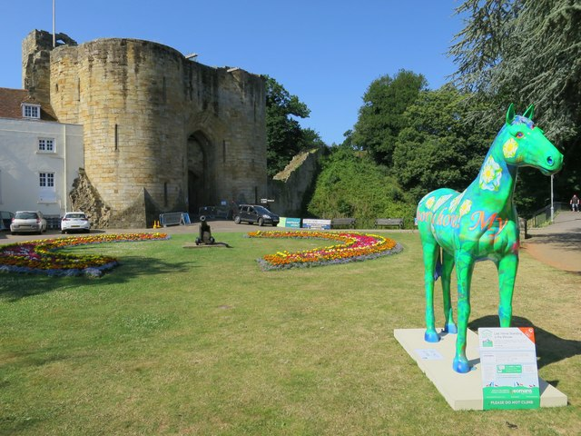 Herd of the Hospice horse N°4