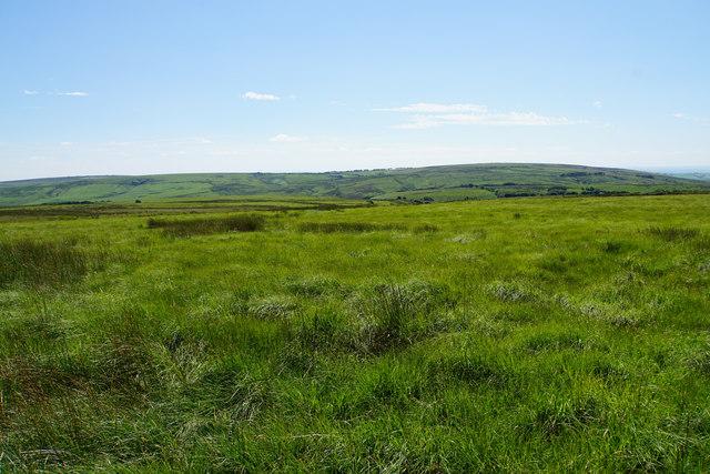 Moorland above Pinkery Farm
