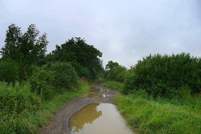 King Street Lane at the crossing with the Gypsy Nook to Sproxton byway