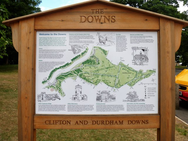 Clifton Down