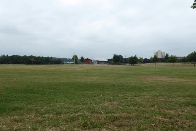 Netham Park