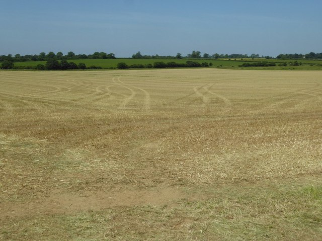 A silaged field