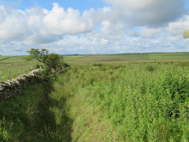 Fence, dyke and ditch at Ha' of Alterwall near Wick