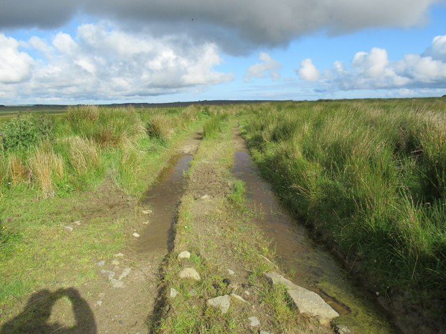 Tractor track continuing across field from track at Ha' of Alterwall near Wick