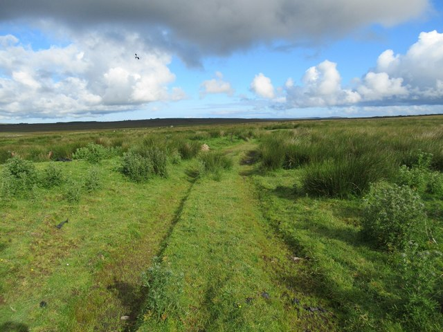 Tractor track still continuing on to open ground at Ha' of Alterwall near Wick