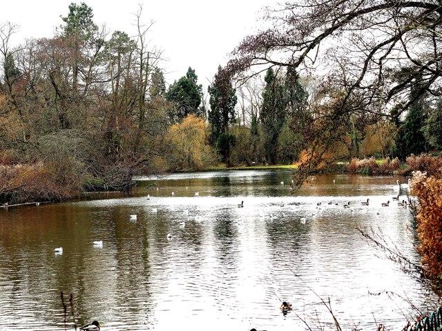 Brueton Park Lake