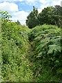 SK4043 : Footpath near Smalley Hall by Alan Murray-Rust