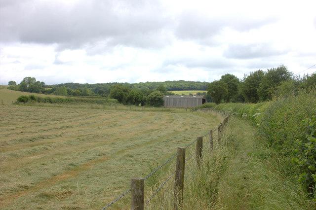Vale Road footpath 2