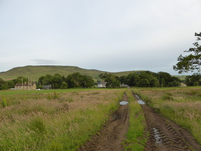 Tyre tracks in field, Dunsyre