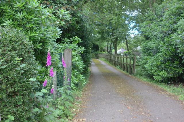 Northchurch Lane