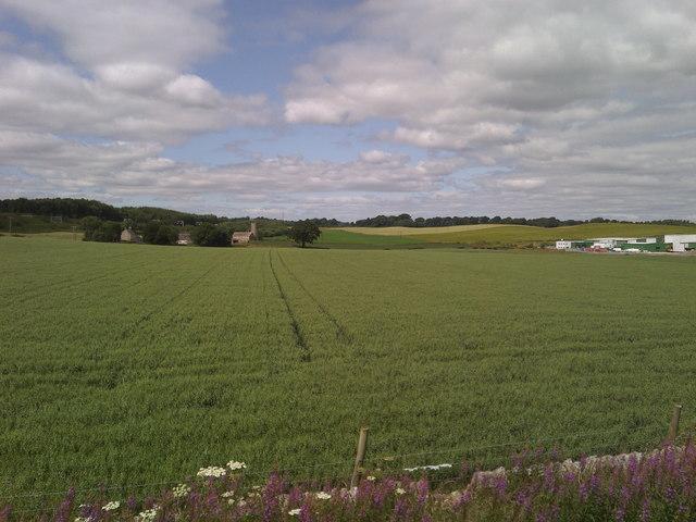 Myrehead farm from Manuel station