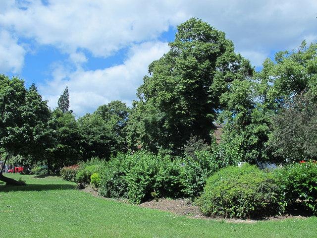 Gardens between Ashmount Road and Broad Lane,N15