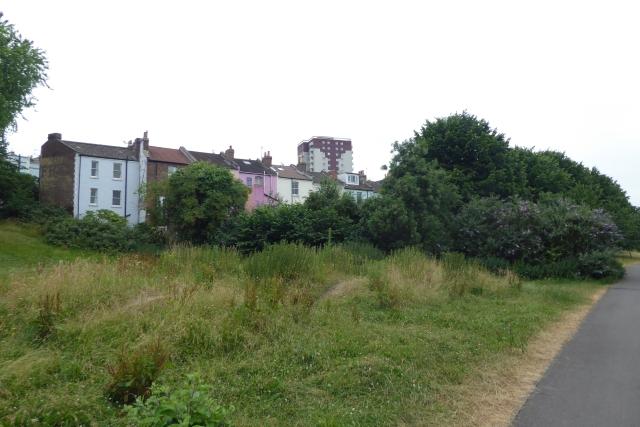 Rear of houses on Fraser Street