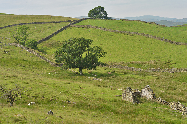 Ruin and fields above Browfoot