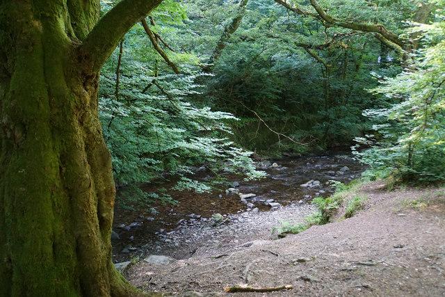 West Lyn River
