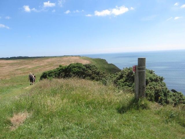 The Headland Way at Beacon Hill