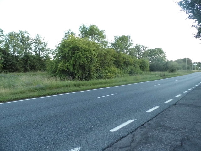 The A31 east of Winchester