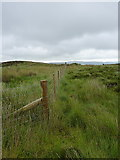 SH9521 : Modern fence on Creigiau'r Llyn by Richard Law