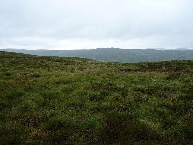 On the top of the Bryn Mawr ridge