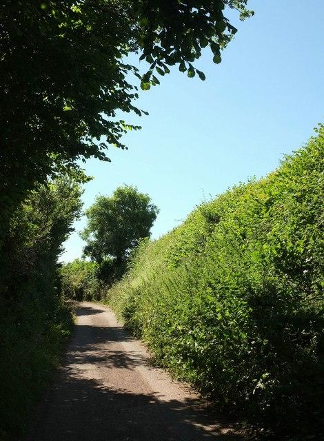 Lane to Fleet Mill