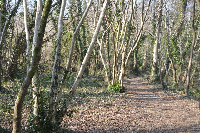 Plymouth Cross City Link, Leigham Wood