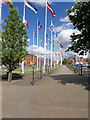 TA0928 : European Flags at Hull Marina by David Dixon