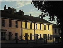 SX9265 : Terraced houses, Babbacombe Road by Derek Harper