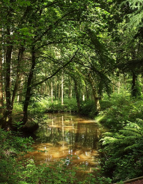 Watercourse, Stover