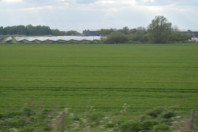 Field by Solar Farm